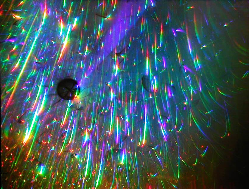 http://djxhemary.files.wordpress.com/2010/10/atomic.jpg